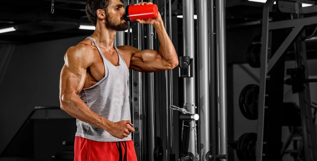 Can too much protein make you fat?